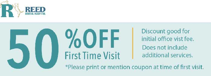 50% Off first time visit